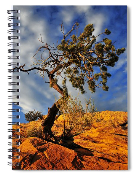 Spiral Notebook featuring the photograph Dusk Dance by Skip Hunt