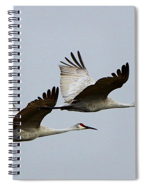 Dynamic Duo Spiral Notebook
