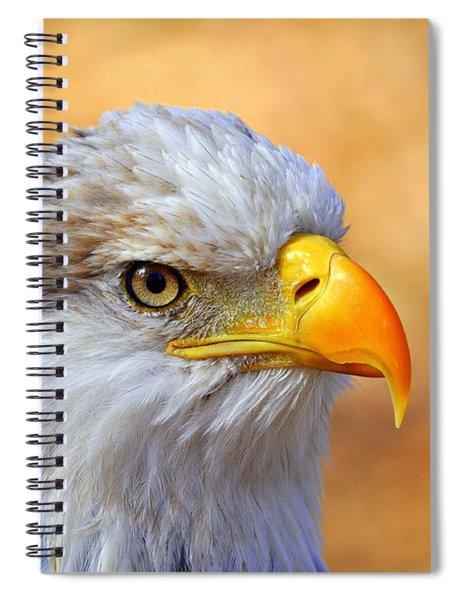 Eagle 7 Spiral Notebook