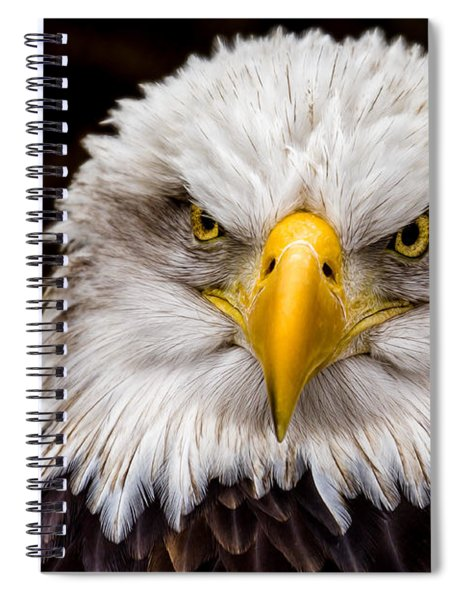 Defiant And Resolute - Bald Eagle Spiral Notebook