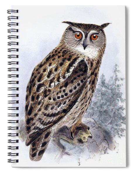 Eagle Owl  Bubo Ignavus Spiral Notebook