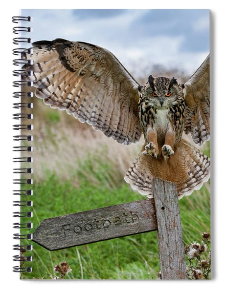 Eagle Owl On Signpost Spiral Notebook