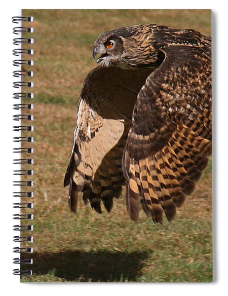 Eagle Owl On The Hunt 2 Spiral Notebook