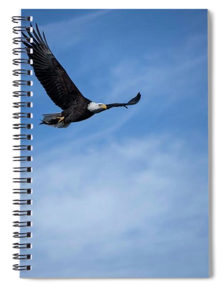 Eagles On The Fox - 3 Spiral Notebook