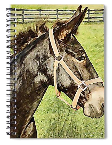 Earistotle Spiral Notebook