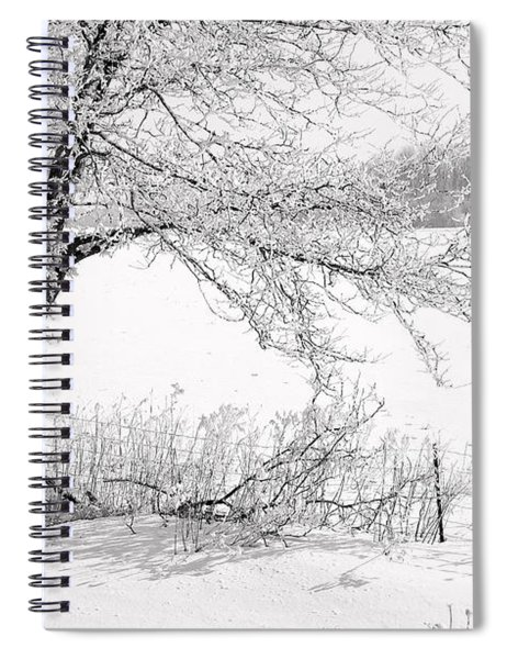 Early Frost Spiral Notebook