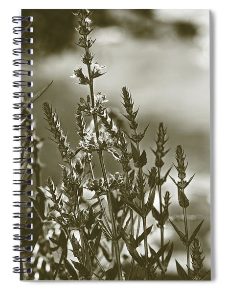 Early Morning Reflections Spiral Notebook