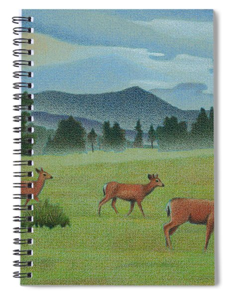 Early Spring Evergreen Spiral Notebook