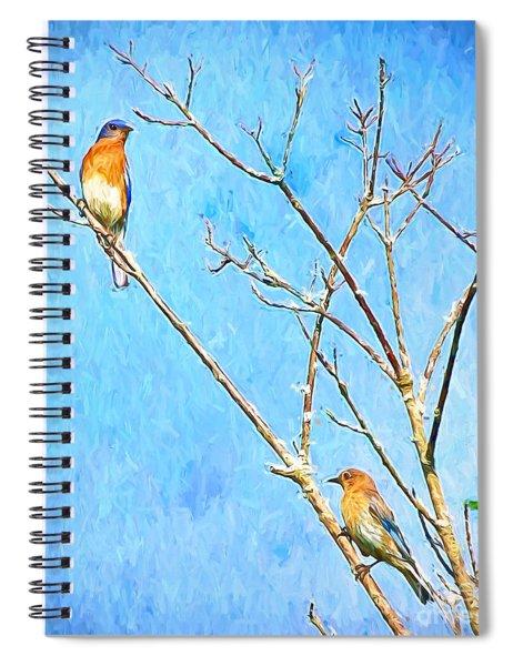 Eastern Bluebird Couple Spiral Notebook