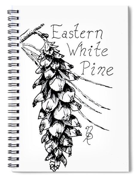 Eastern White Pine Cone On A Branch Spiral Notebook