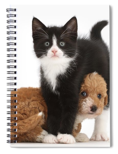 Easy To See Which One Of Us Is The Boss Spiral Notebook