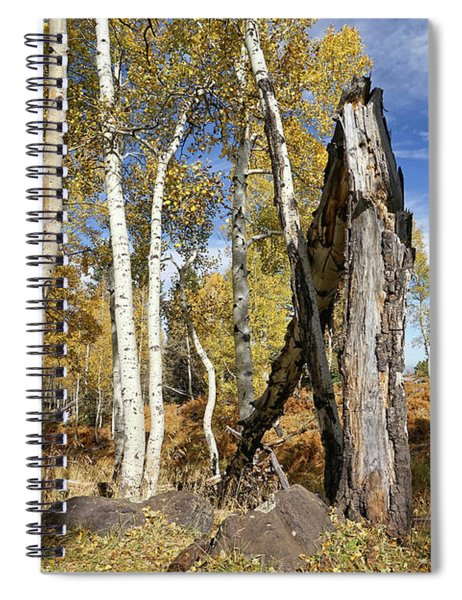 Edge Of The Woods Spiral Notebook