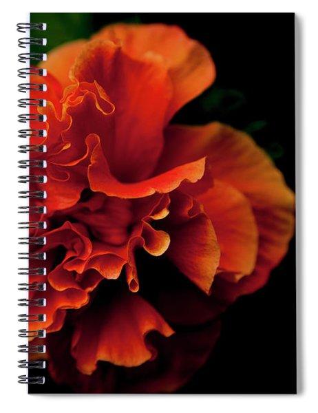 Efflorescence Spiral Notebook