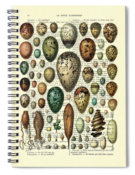 Eggs Collection Spiral Notebook
