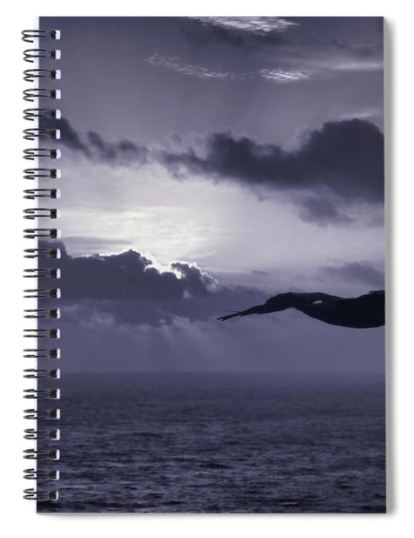 Pelican At Sunrise Spiral Notebook