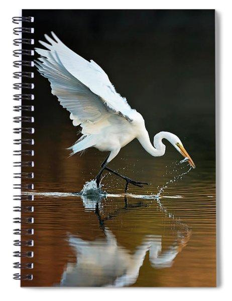 Egret At Sunset Spiral Notebook