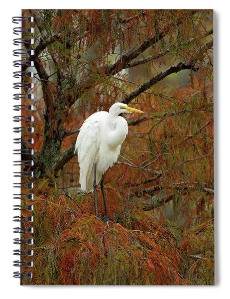Egret In Autumn Spiral Notebook