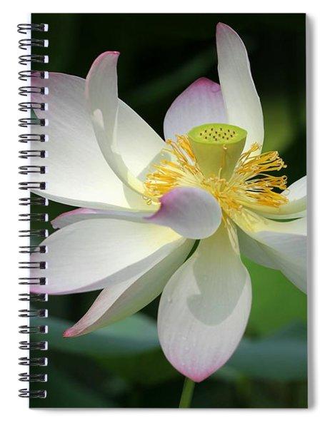 Elegant Lotus Spiral Notebook