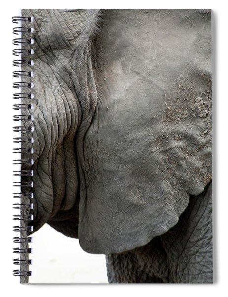 Elephant 2 Spiral Notebook