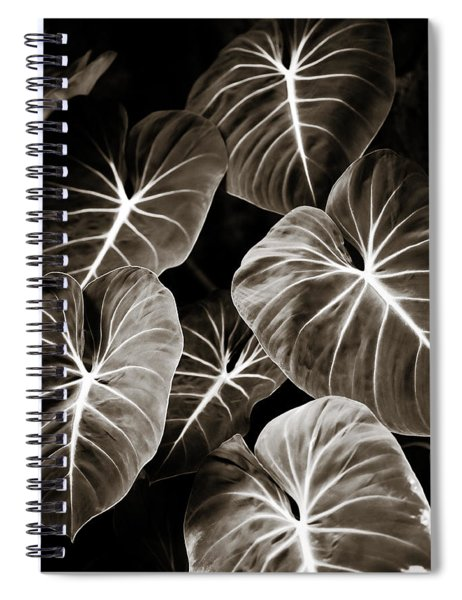 Elephant Ears On Parade Spiral Notebook