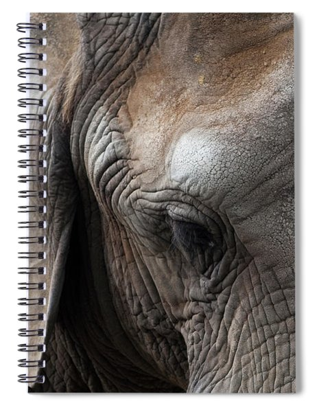 Spiral Notebook featuring the photograph Elephant Eye by Lorraine Devon Wilke