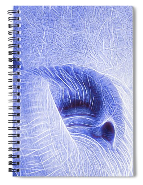 Elephant Looking Electrified Spiral Notebook