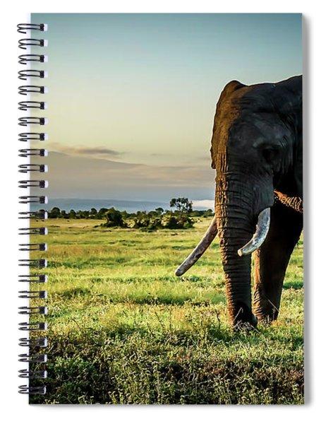 Elephant Near Mt Kenya Spiral Notebook