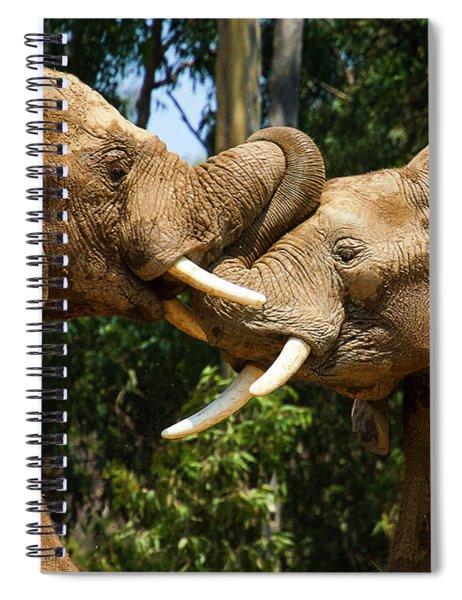 Elephant Play 2 Spiral Notebook
