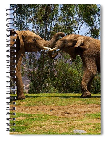 Elephant Play 3 Spiral Notebook