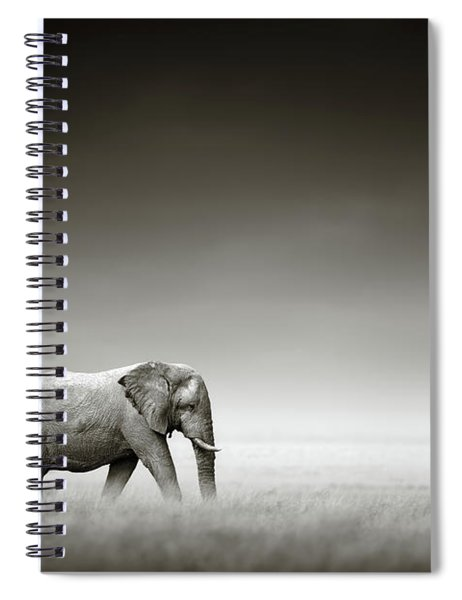 Elephant With Zebra Spiral Notebook