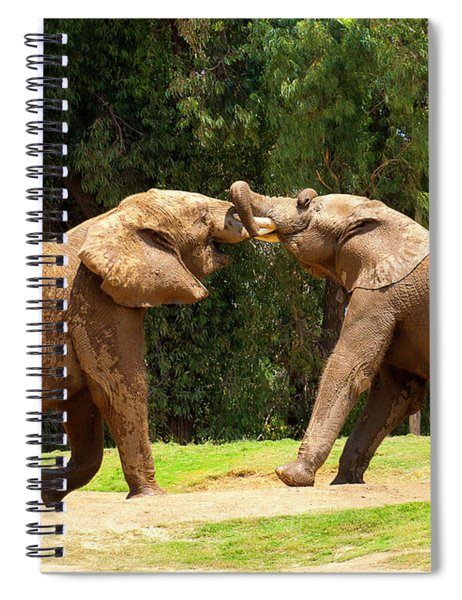Elephants At Play 2 Spiral Notebook