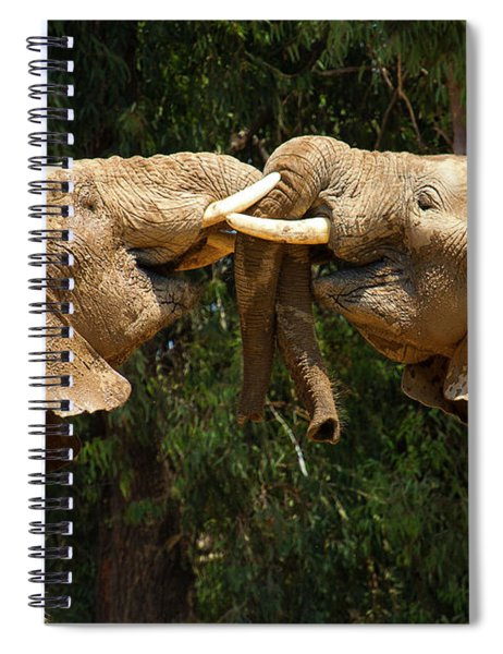 Elephants At Play Spiral Notebook