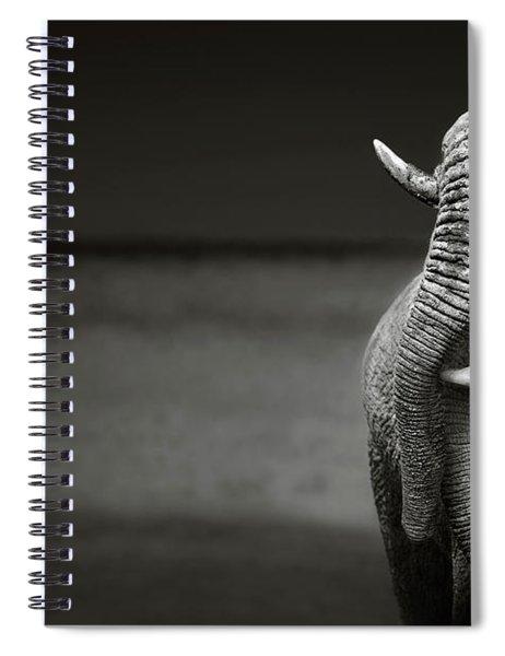 Elephants Interacting Spiral Notebook