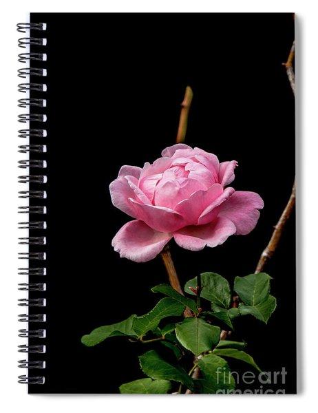Elizabeth Spiral Notebook