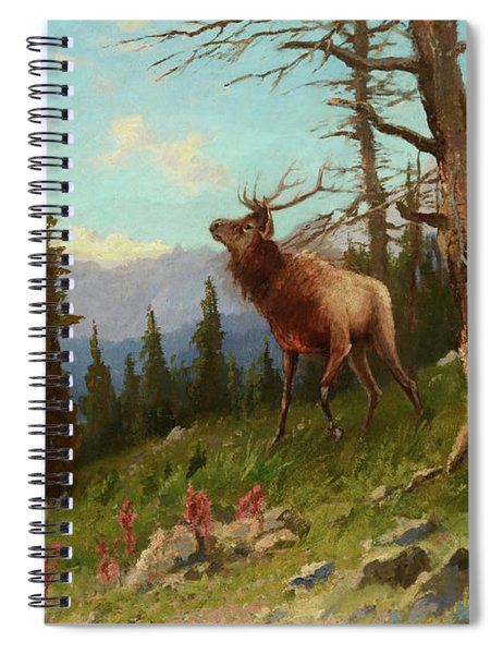 Elk In The Mountains Spiral Notebook
