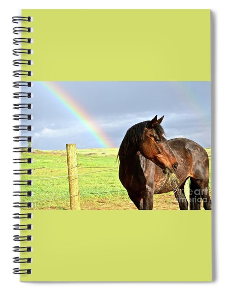 Ella And The Rainbows Spiral Notebook