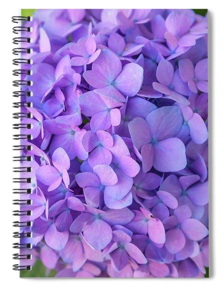 Endless Summer 2 Spiral Notebook