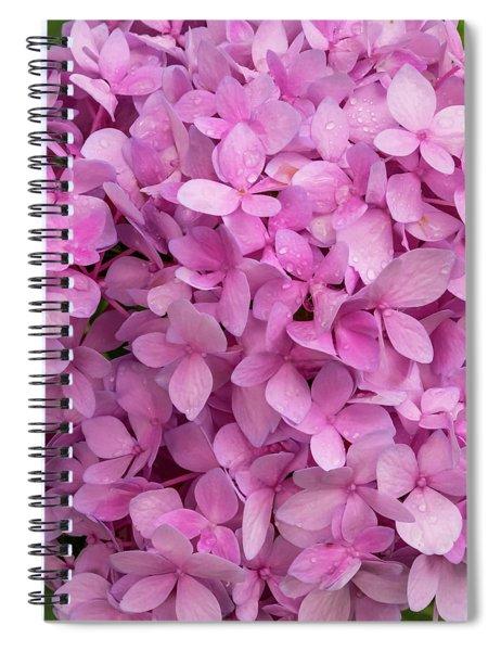 Endless Summer Spiral Notebook