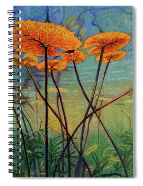 Englightenment Spiral Notebook