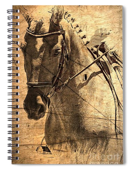 Equestrian Spiral Notebook