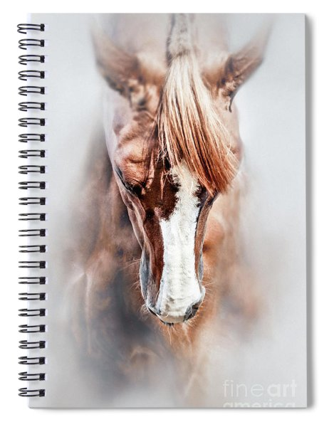 Equine Portrait Beautiful Thoroughbred Horse Head Spiral Notebook