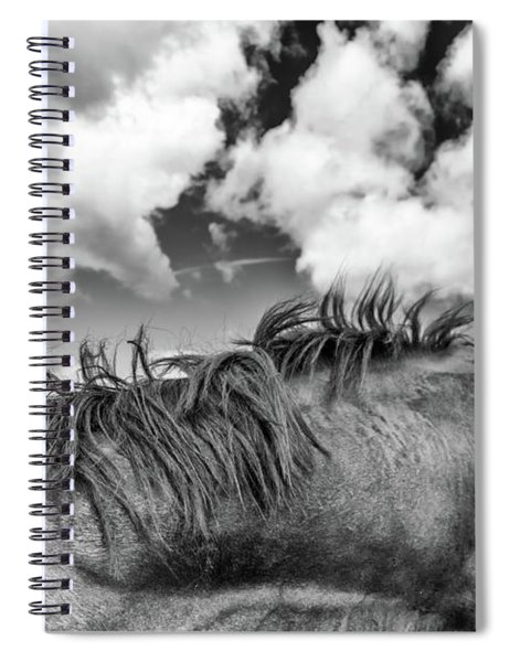 Equine Spiral Notebook