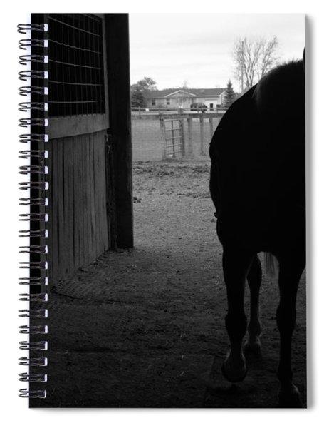 Equus Sapien Vi Spiral Notebook