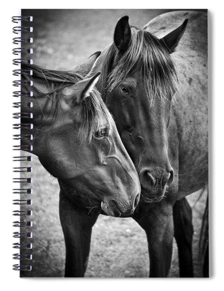 Eskimo Kisses Spiral Notebook