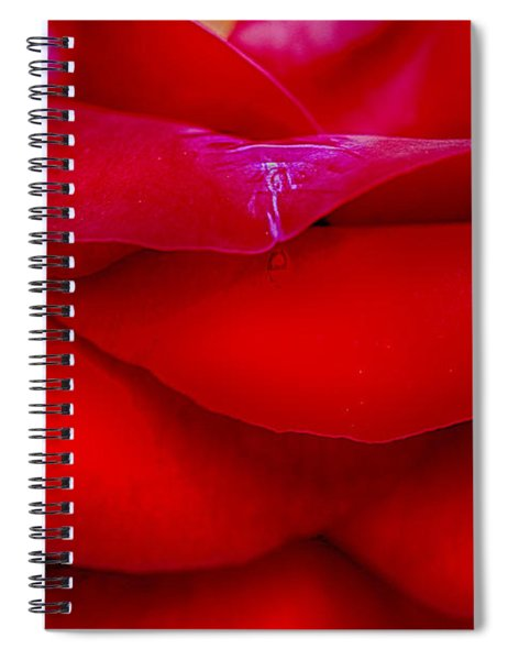 Essence Of Love Spiral Notebook