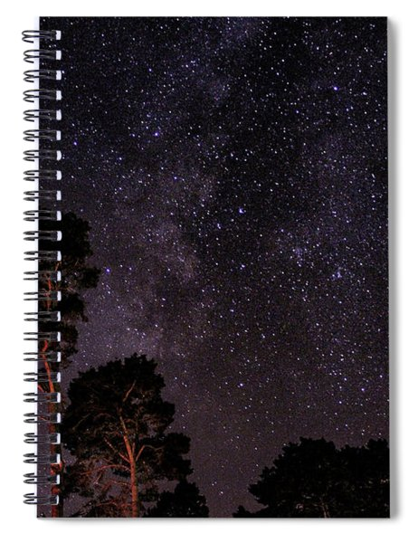 Eucalyptus Galaxy Spiral Notebook