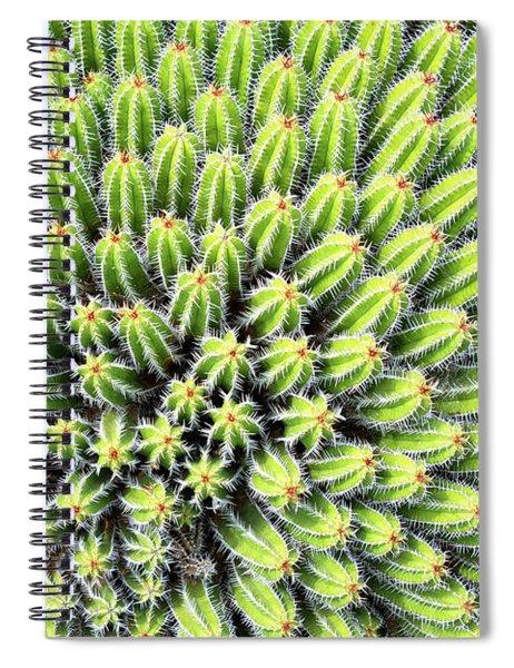 Euphorbia Spiral Notebook