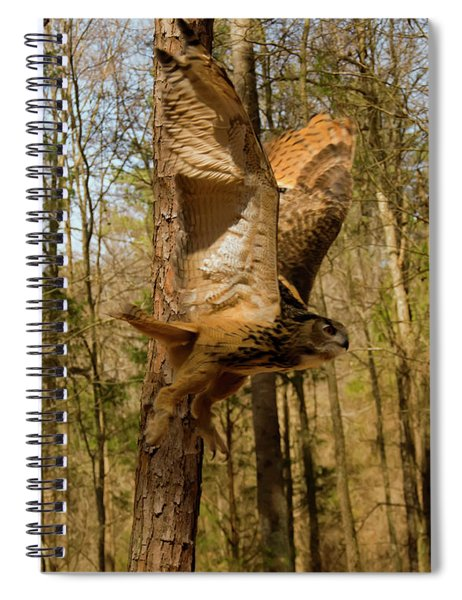 Eurasian Eagle Owl In Flight Spiral Notebook