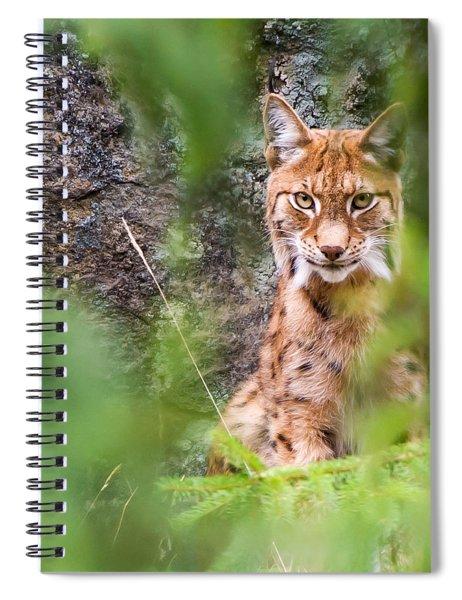 Eurasian Lynx Spiral Notebook