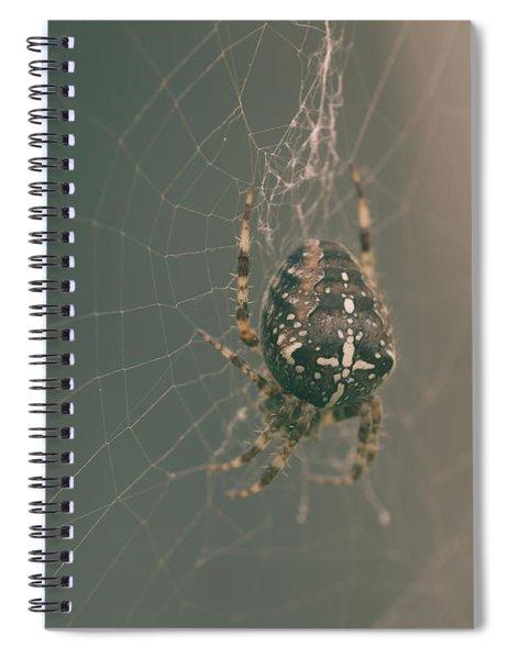 European Garden Spider B Spiral Notebook